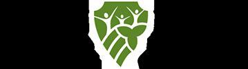 Logo BSEO